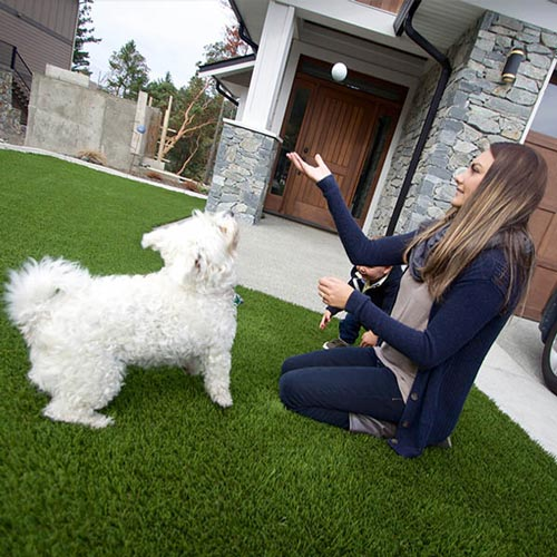 Girl playing ball with pet dog on SynLawn artificial turf