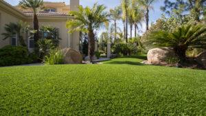residential-artificial-turf-installation